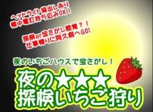 【1~2月金曜ナイト限定】夜の★探検いちご狩り