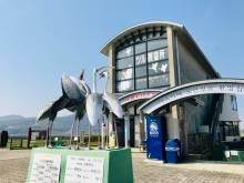 【近隣観光】ツル観察と出水歴史観光バス