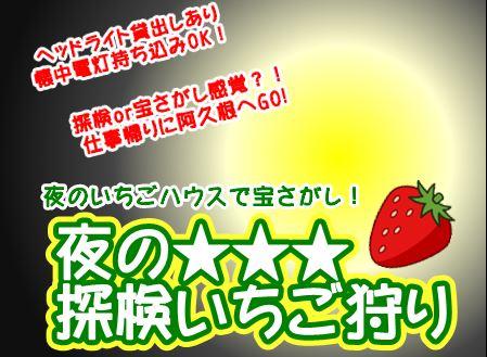 夜の★★★探検いちご狩り(1~2月金曜開催)